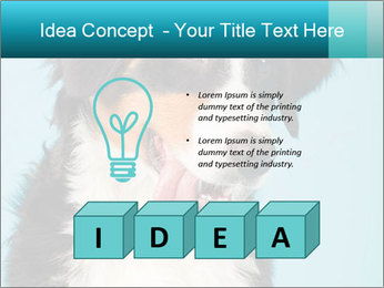 Berner sennen dog PowerPoint Template - Slide 80
