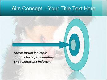 Berner sennen dog PowerPoint Template - Slide 83
