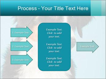 Berner sennen dog PowerPoint Template - Slide 85