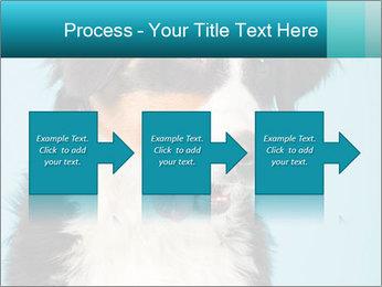 Berner sennen dog PowerPoint Template - Slide 88