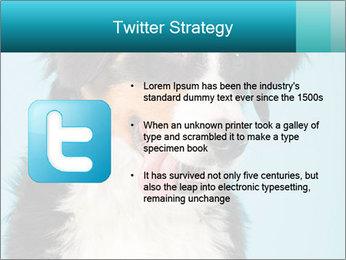 Berner sennen dog PowerPoint Template - Slide 9