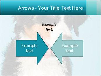 Berner sennen dog PowerPoint Template - Slide 90