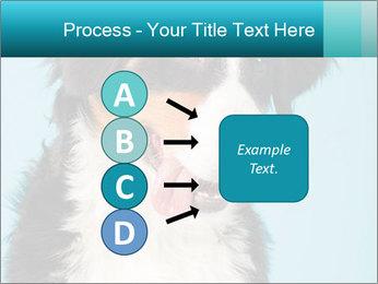 Berner sennen dog PowerPoint Template - Slide 94
