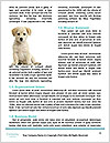 0000092427 Word Templates - Page 4