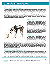 0000092427 Word Templates - Page 8