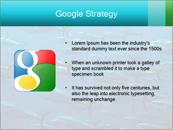 Group of giant tuna PowerPoint Template - Slide 10