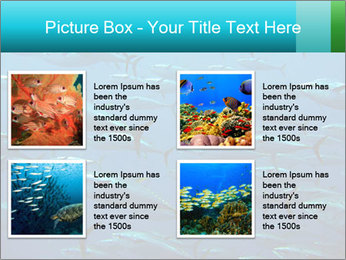Group of giant tuna PowerPoint Template - Slide 14