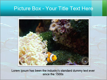 Group of giant tuna PowerPoint Template - Slide 16