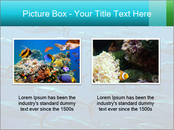 Group of giant tuna PowerPoint Template - Slide 18