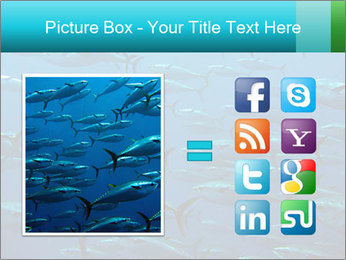 Group of giant tuna PowerPoint Template - Slide 21