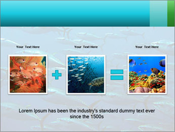 Group of giant tuna PowerPoint Template - Slide 22