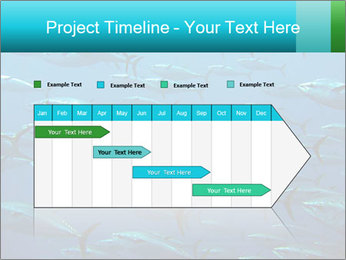 Group of giant tuna PowerPoint Template - Slide 25
