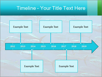 Group of giant tuna PowerPoint Template - Slide 28