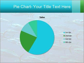 Group of giant tuna PowerPoint Template - Slide 36