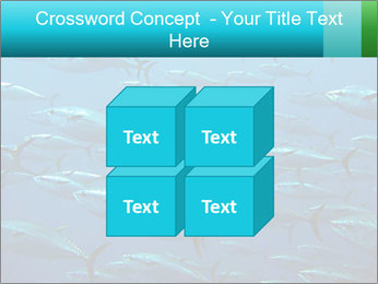 Group of giant tuna PowerPoint Template - Slide 39