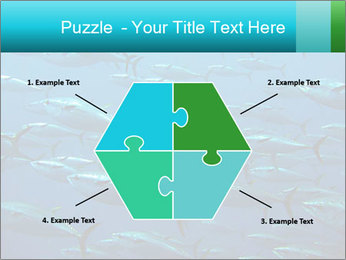 Group of giant tuna PowerPoint Template - Slide 40