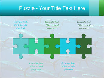 Group of giant tuna PowerPoint Template - Slide 41
