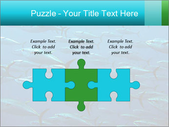 Group of giant tuna PowerPoint Template - Slide 42