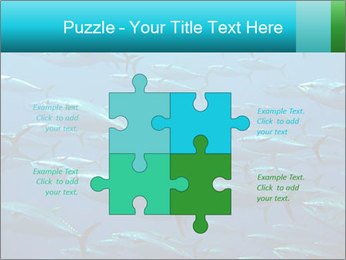 Group of giant tuna PowerPoint Template - Slide 43