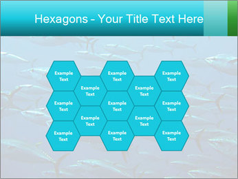 Group of giant tuna PowerPoint Template - Slide 44