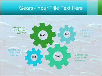 Group of giant tuna PowerPoint Template - Slide 47