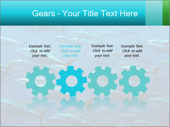 Group of giant tuna PowerPoint Template - Slide 48