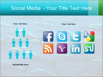 Group of giant tuna PowerPoint Template - Slide 5