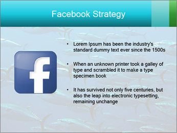 Group of giant tuna PowerPoint Template - Slide 6