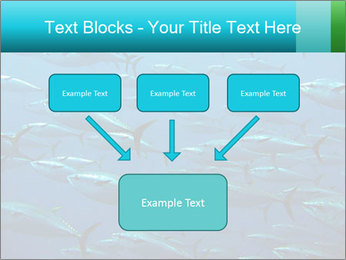 Group of giant tuna PowerPoint Template - Slide 70