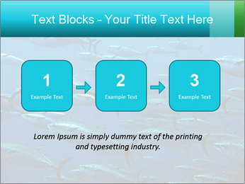 Group of giant tuna PowerPoint Template - Slide 71