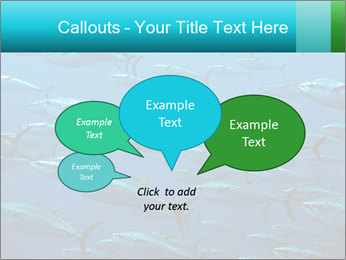 Group of giant tuna PowerPoint Template - Slide 73