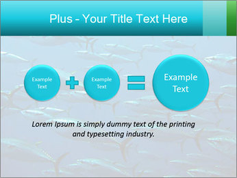Group of giant tuna PowerPoint Template - Slide 75