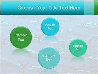 Group of giant tuna PowerPoint Template - Slide 77