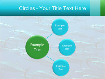 Group of giant tuna PowerPoint Template - Slide 79