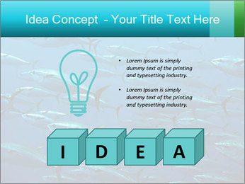 Group of giant tuna PowerPoint Template - Slide 80