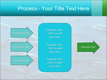 Group of giant tuna PowerPoint Template - Slide 85