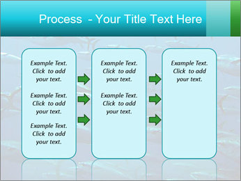 Group of giant tuna PowerPoint Template - Slide 86