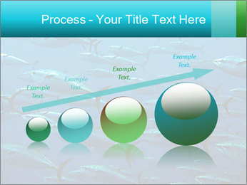 Group of giant tuna PowerPoint Template - Slide 87