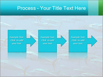 Group of giant tuna PowerPoint Template - Slide 88