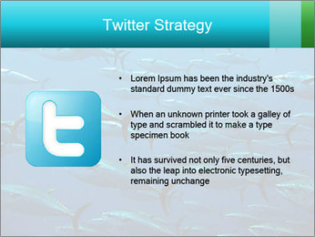 Group of giant tuna PowerPoint Template - Slide 9