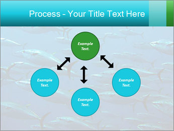 Group of giant tuna PowerPoint Template - Slide 91