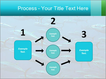 Group of giant tuna PowerPoint Template - Slide 92