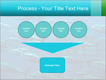 Group of giant tuna PowerPoint Template - Slide 93