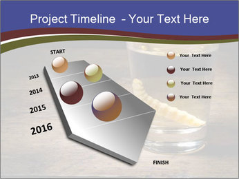 Tequila PowerPoint Template - Slide 26