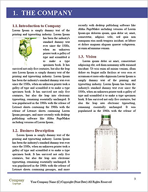 0000092436 Word Template - Page 3