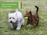 Two cute doggies PowerPoint Templates