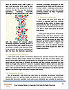 0000092441 Word Template - Page 4
