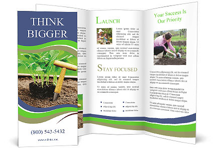 0000092446 Brochure Template