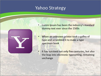 Turnip cabbage PowerPoint Template - Slide 11