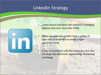 Turnip cabbage PowerPoint Template - Slide 12
